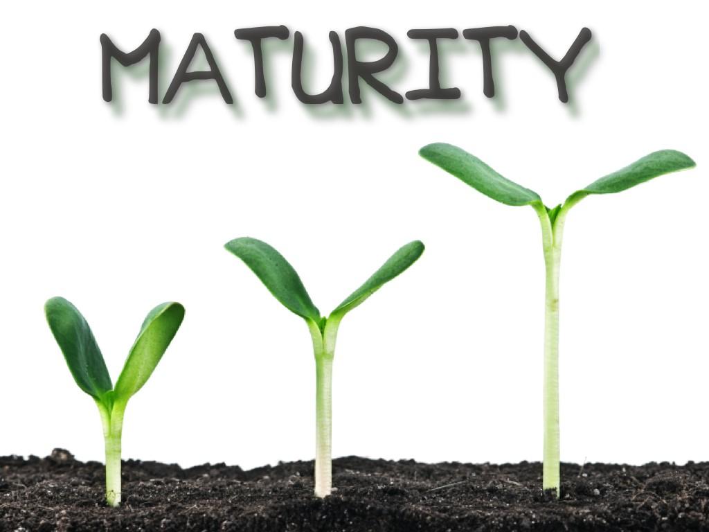 maturity-cover-001.jpg